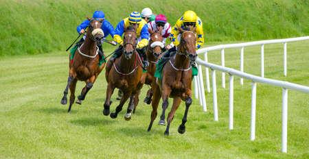 Race horses and jockeys going for the finish line