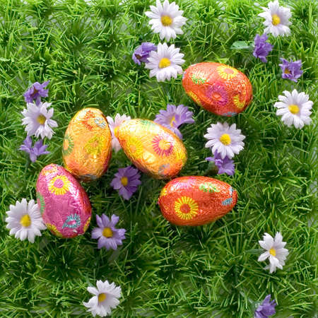 chocolat eggs hide in the grass