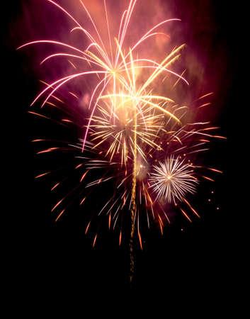 Fireworks in the night sky