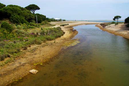 Photo pour The sandy landscape of Marismas del Odiel National Park in Andalusia, Spain - image libre de droit