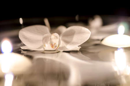 Orchid flower and candles floating on the water