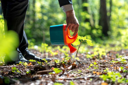 Businessman in a suit watering a plant in woodland with a small plastic toy watering can in a conceptual image.