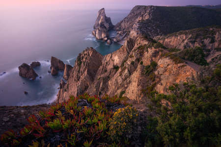 Praia da Ursa Beach. Rocky foreground with some yellow flowers in sunset lit. Surreal scenery located in Sintra, Portugal. Atlantic Ocean coastline landscape.