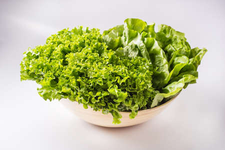 Curly lettuce in a bowl
