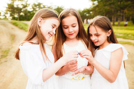 Photo pour Three girls in white dresses walk in nature in the summer. Childrens pastime during the summer holidays. - image libre de droit