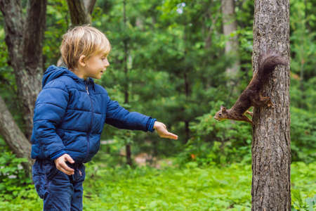 Foto de Boy and little squirrel in the park - Imagen libre de derechos