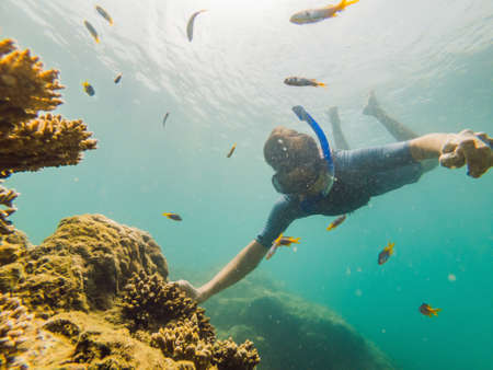 Photo pour Young men snorkeling exploring underwater coral reef landscape   in the deep blue ocean with colorful fish and marine life - image libre de droit