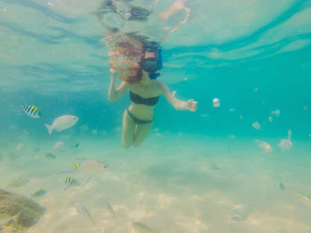 Photo pour Happy woman in snorkeling mask dive underwater with tropical fishes in coral reef sea pool. Travel lifestyle, water sport outdoor adventure, swimming lessons on summer beach holiday - image libre de droit