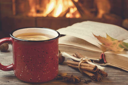 Photo pour Red mug with hot tea and an open book in front of a burning fireplace, comfort, relaxation and warmth of the hearth concept - image libre de droit