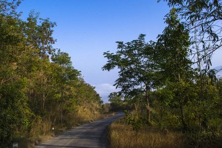The Way Talamok-Phutok Road to Sea fog Loei Thailand