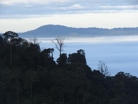 The sea fog at Khao Chamao District of Phetchabun province