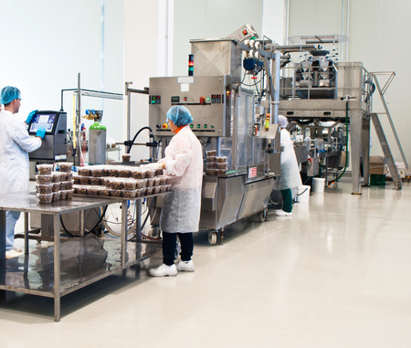 tasty olives packaging production in factory