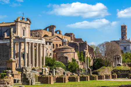 Photo for Roman Forum in sunny day, Rome, Italy - Royalty Free Image