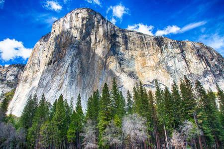 El Capitan towers above the valley floor. Yosemite National Park, California. USA