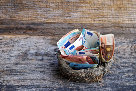 Save money or spend? Many Euro notes in a nest