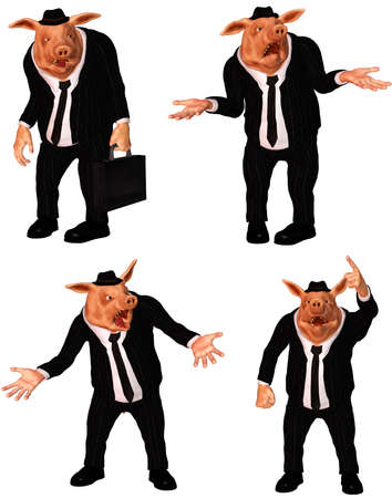 a funny business pig - isolated on white