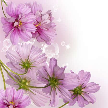 Flower decorative border