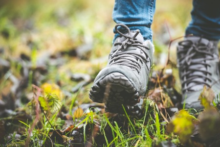 Photo for feet in shoes on a forest path - Royalty Free Image