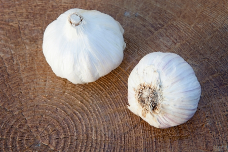 Closeup photo of two large garlic on a wooden background