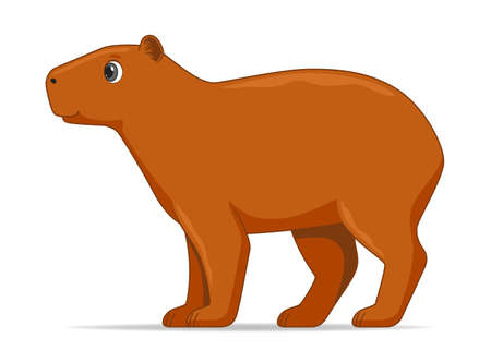 Illustration pour Capybara animal standing on a white background. Cartoon style vector illustration - image libre de droit