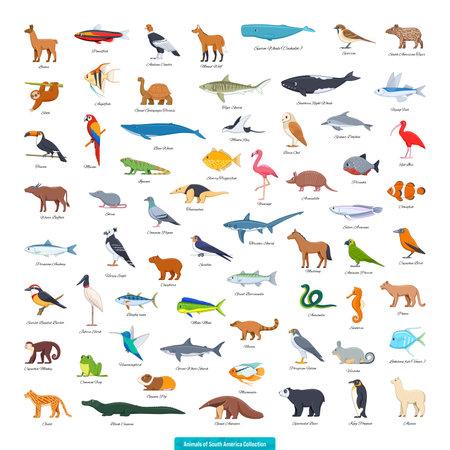 Illustration pour Animals of South America Collection. Cartoon style vector illustration - image libre de droit