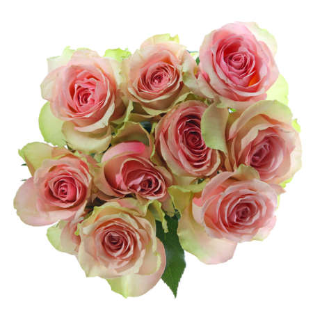 Bouquet of pink roses isolated on white background