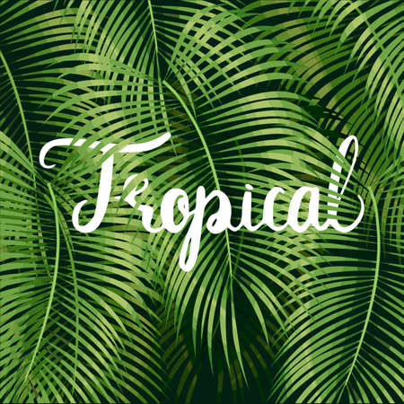 Beautiful floral summer pattern background with tropical palm leaves and lettering tropical.
