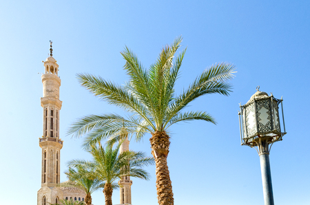 lantern street lighting two date palms two minarets of the mosqu