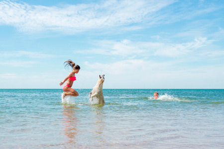 children playing on vacation with dogs on the beach and in the sea.