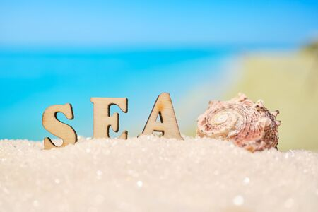 Photo pour The word sea seashell with abstract sand with blurry photo of sea and beach. Close up. - image libre de droit