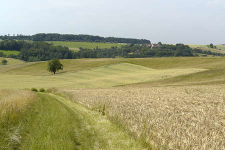 agricultural landscape in south germany - horizontal image