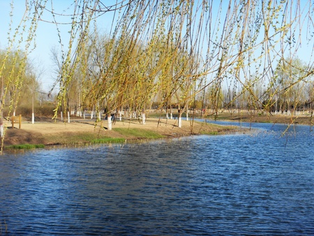 the river of spring