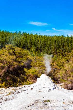 Foto de Lady Knox Geyser on the North Island in Wai-O-Tapu, Rotorua, New Zealand. Vertical. - Imagen libre de derechos