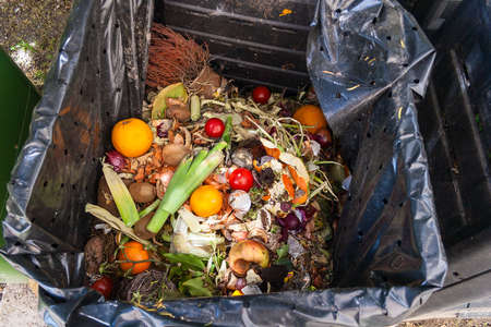 Foto de fresh household scrap in the compost bin - Imagen libre de derechos