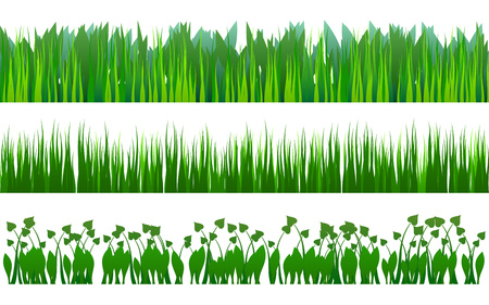 Three grass and plants variants in green colors on white background