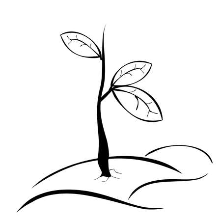 Photo pour vector simple hand draw sketch black and white small plant with three leaf - image libre de droit