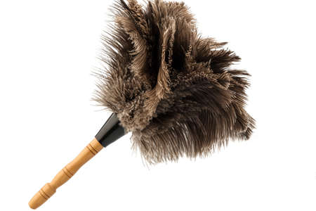 a feather duster against white background