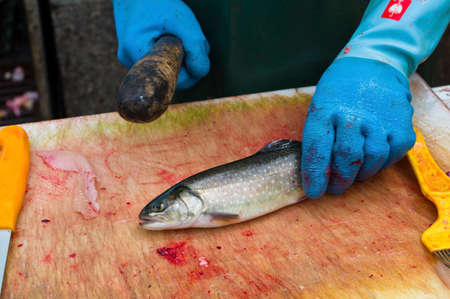 a raw fish is filleted