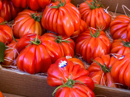 fresh meat tomatoes