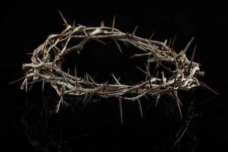 Crown of thorns over a dark background