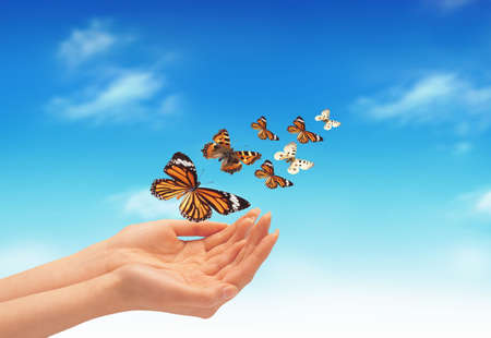 Nice picture with a butterflies on the hand