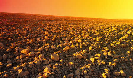 Freshly Plowed Field In Spring Ready For Cultivation, Sunset
