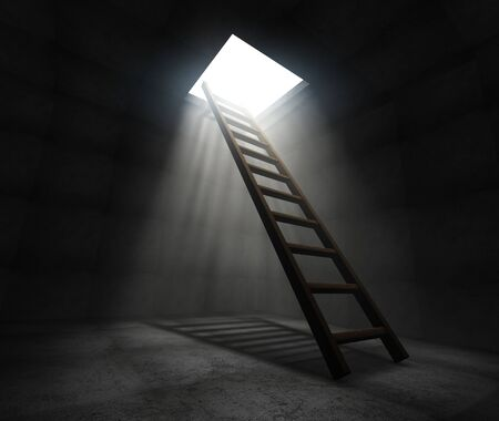 Ladder to freedom
