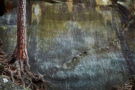 Foto für Stone texture. Nature background - Lizenzfreies Bild