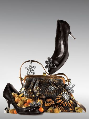 Shoes and purse display.  A still life arrangement of a pair of woman's black high heel shoes and purse with matching decorations