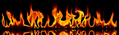 Fire and flames. Fire flames on a black background.