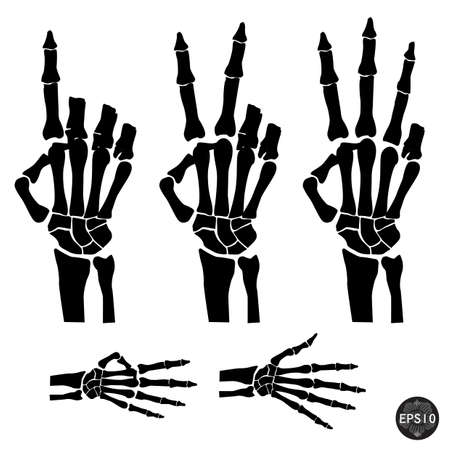 Hand skeleton shows the number of fingers, Halloween, Vector