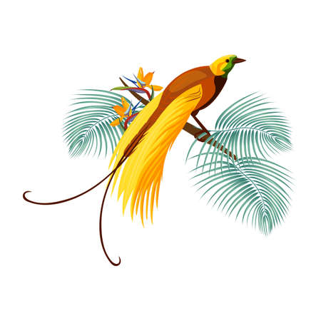 Illustration pour Greater bird-of-paradise with yellow tail sitting on branch - image libre de droit