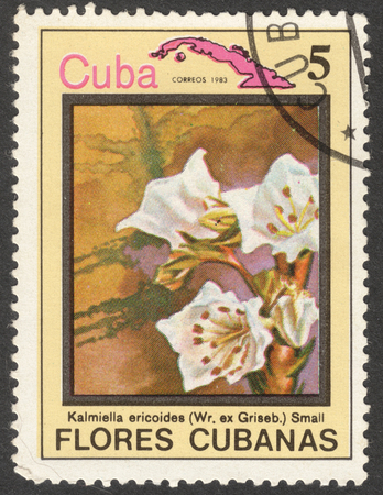 MOSCOW, RUSSIA - CIRCA MAY, 2016: a post stamp printed in CUBA shows Kalmiella ericoides flower, the series Flora and Fauna - Flowers, circa 1983