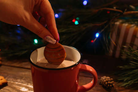 Winter holidays with latte and cookies. Close up of unrecognizable woman dips delicious gingerbread cake into warm cup of coffee with milk on Christmassy pine and fairy lights background